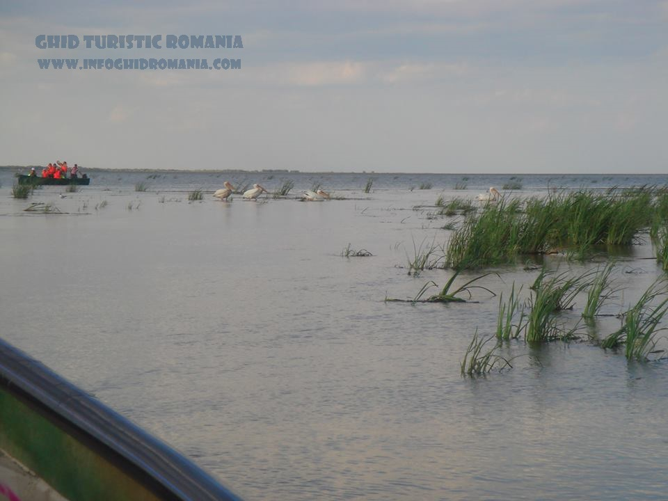Pescaturismul - un nou concept de vacanta in Delta Dunarii