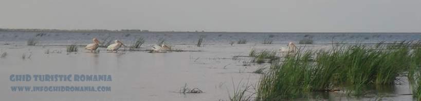 Delta Dunarii va fi in curand pe Google Maps