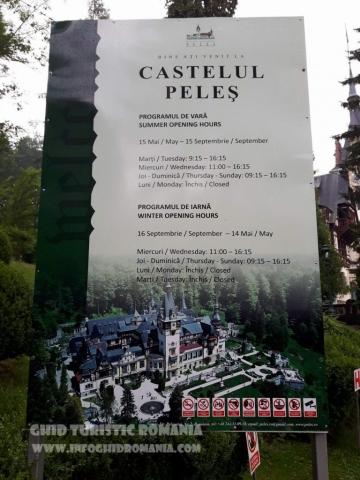 Panou Castel Peles