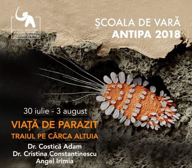 Muzeul Antipa – Viață de parazit, Traiul pe cârca altuia