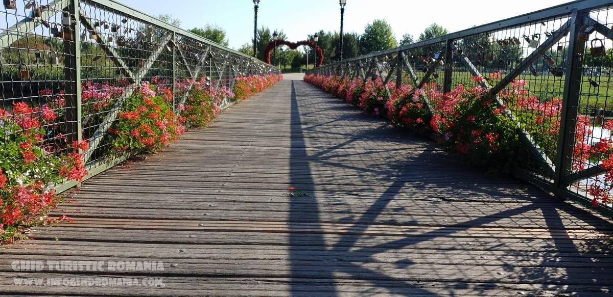 Parcul Natural Comana